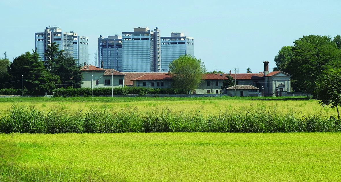 Casa Agricoltura - Immagine campo coltivato con sfondo palazzi